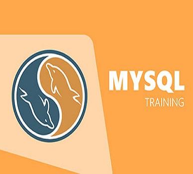 Top MySQL tutors